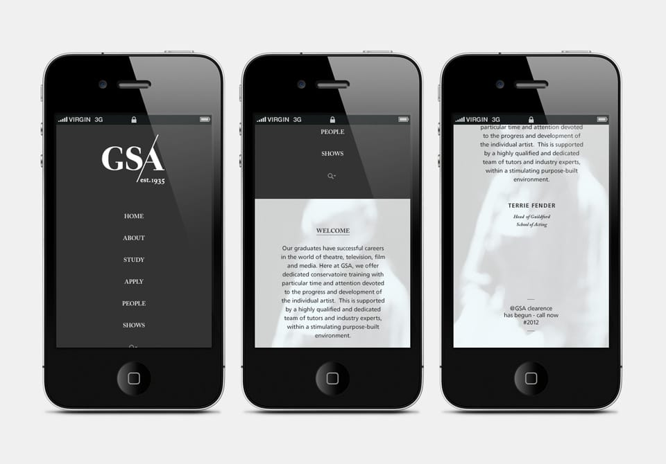 Website on iPhone